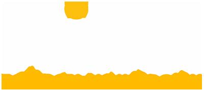 Towson University Hillel Logo